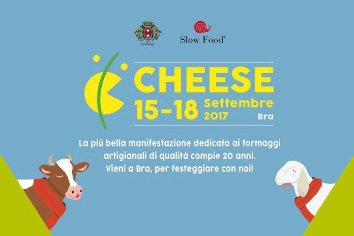 Cheese Bra