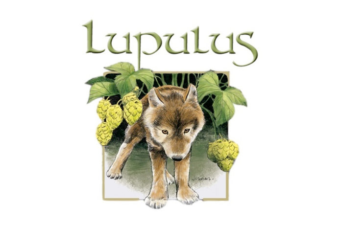 lupulus cover