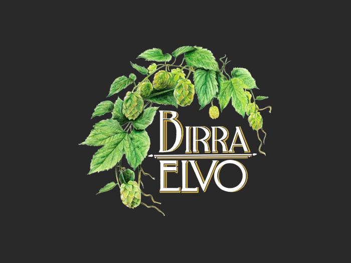 Logo Elvo