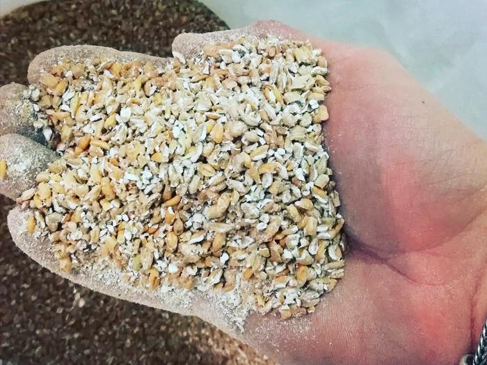 birra agricola maiot