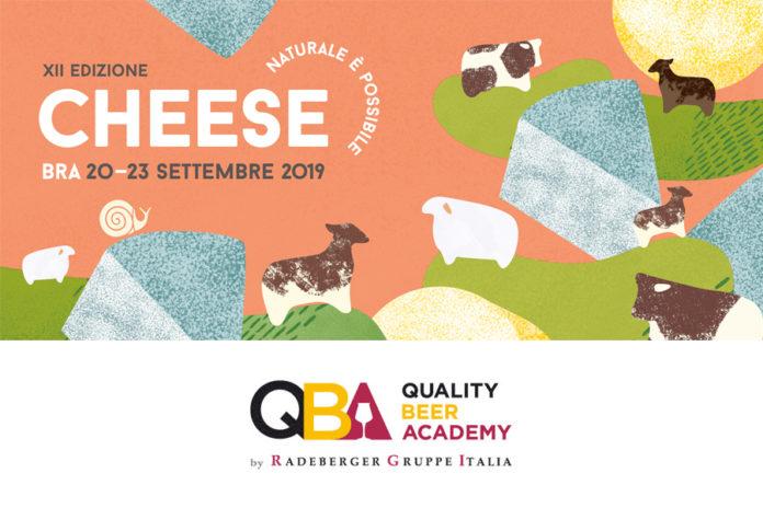 cheese 2019 qba